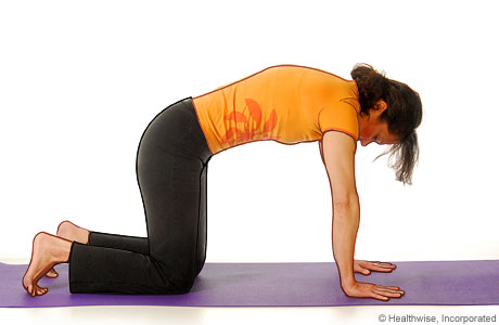 Picture of a woman in step two of the yoga cat cow pose