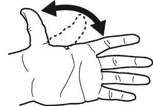 thumb flexion